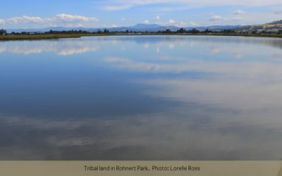 FIGR helps restore Tolay Lake's place…